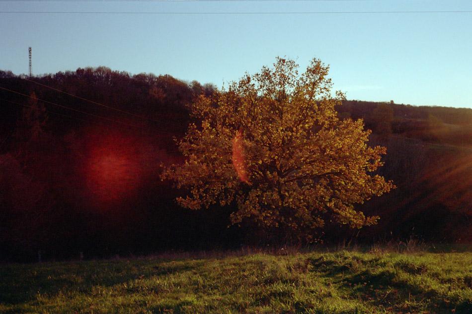 7Artisans 35mm 2.0, Blende 16, 1/60s, Kodak Gold 200